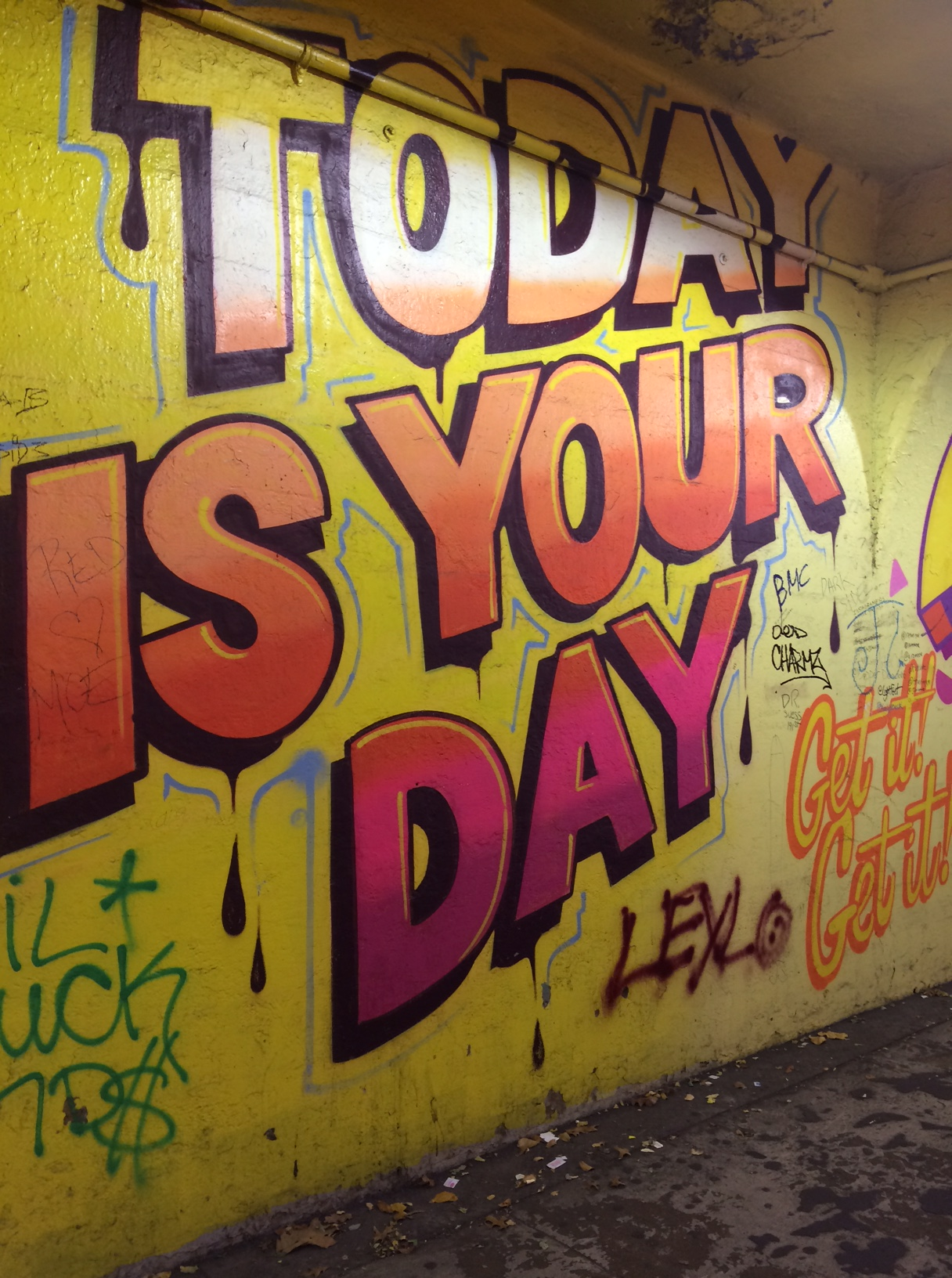 Gorgeous Street Art  I Came Across in the 191st St. SubwayTunnel